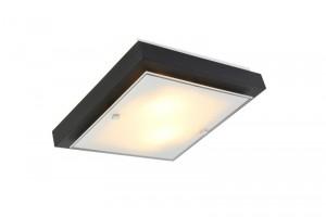 светильник настенно потолочный  ПОЛИНА мал. 2хE27х60W светл  106-21-22-1